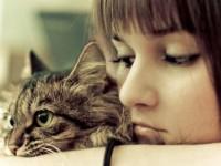 кот и женщина